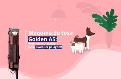 máquina de tosa golden A5